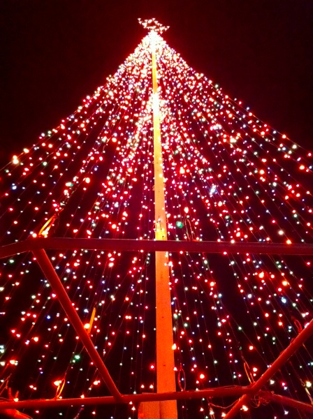 Norman Christmas Tree, Andrews Park